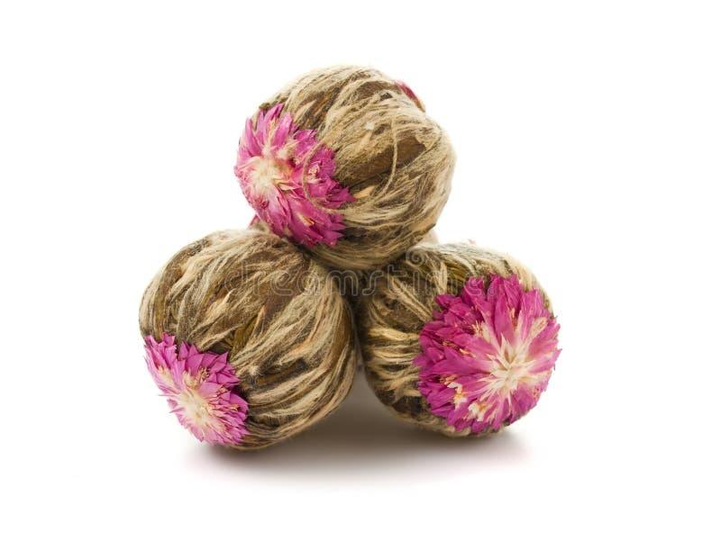 piłki target1488_1_ kwiat chińskiej zielonej herbaty obrazy stock