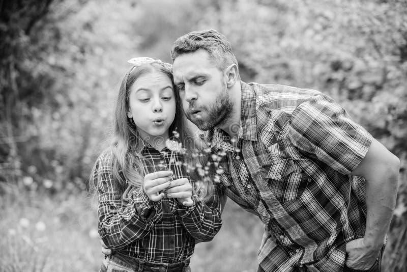 Pi? grandi domande di allergia del polline La bambina del padre gode dell'estate Semi di salto del dente di leone della figlia e  fotografie stock