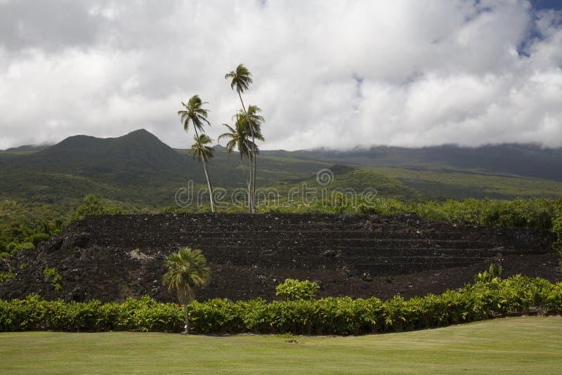 Pi'ilanihale Heiau Hawaï image libre de droits