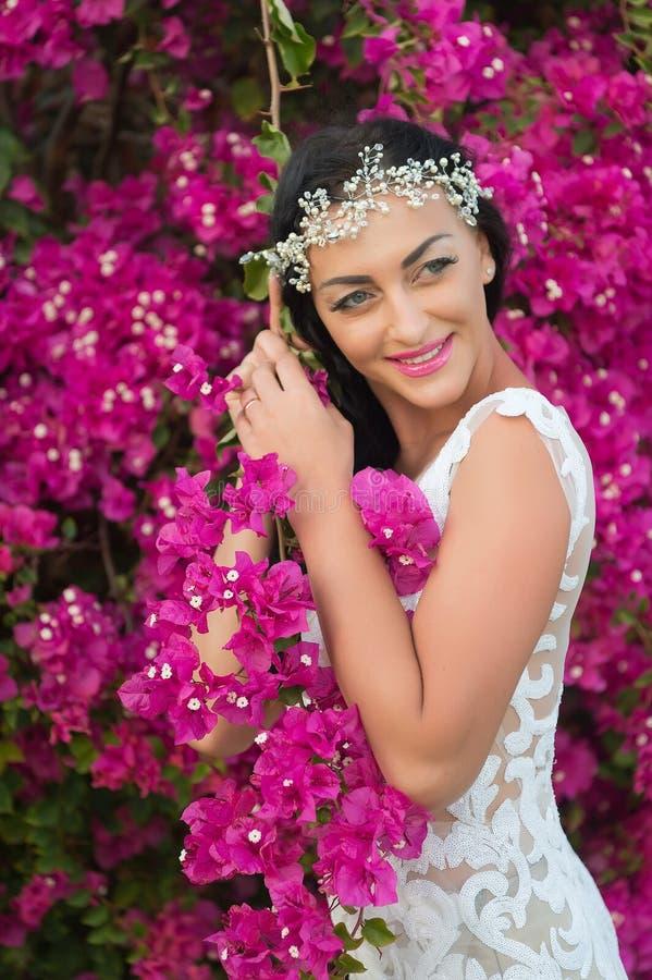 pi?kna kwitnienie Panny młodej ślubnej sukni słonecznego dnia menchii biali kwiaty kwitną natury tło Botanika o temacie ślub Kobi zdjęcia stock