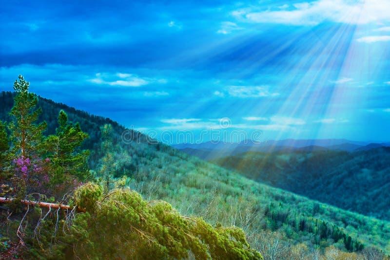 Pi?kna natury sceneria, wycieczkuje aktywno?? Majestatyczny Halny las w chmura krajobrazie Zielony pasmo g?rskie widok Zdumiewa?  zdjęcia stock