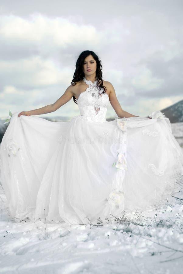 Download Pięknej Sukni Delikatny Dziewczyny Biel Obraz Stock - Obraz złożonej z tradycyjny, sentymentalny: 13342787