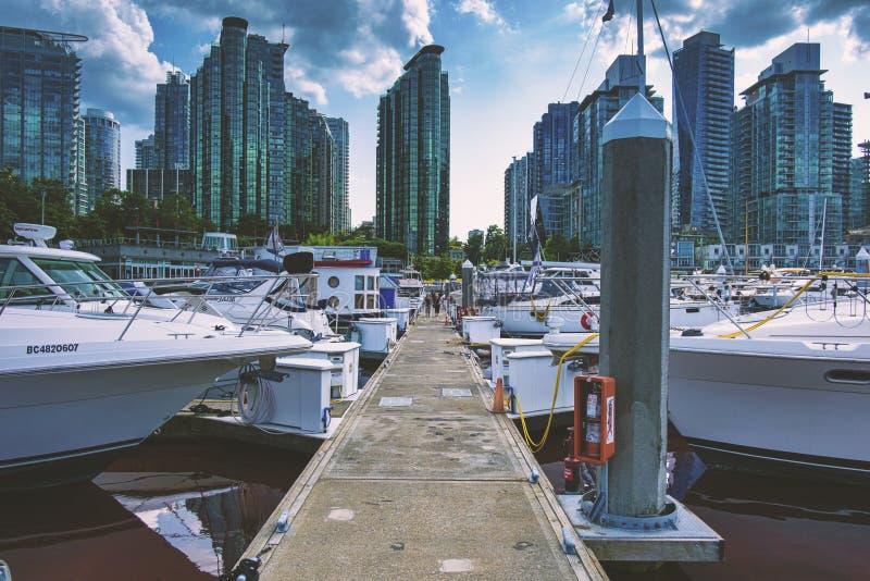 Pi?kni sceniczni g??biki Vancouver i Fraser dolina zdjęcie royalty free