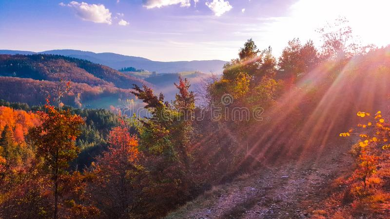 pi?kny jesie? krajobraz Pa?dziernik?w kolory Pi?kno jesie? kolory drzewa zdjęcie royalty free