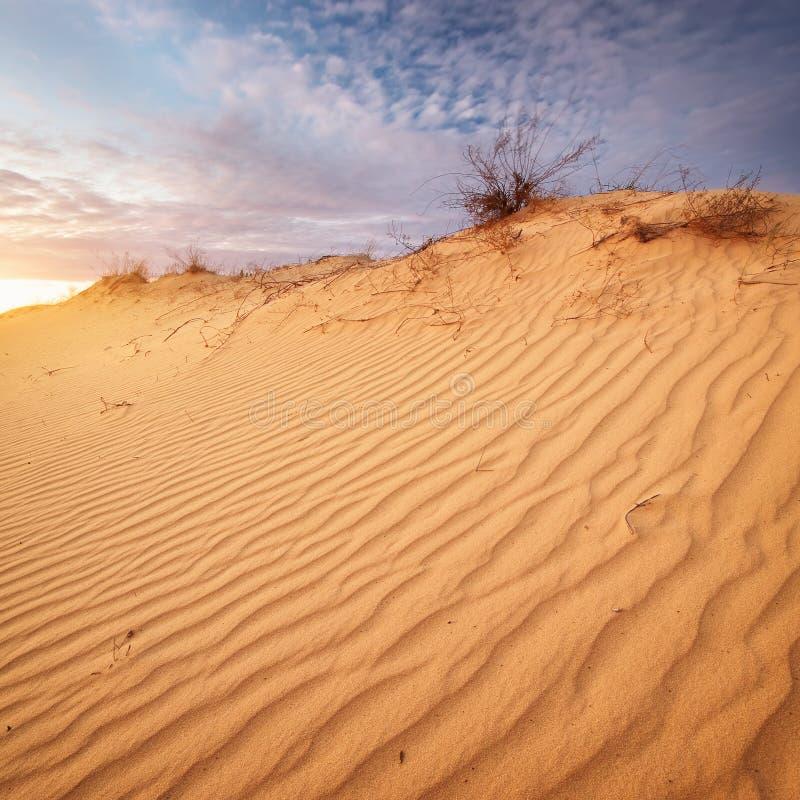 Download Piękny krajobraz w pustyni zdjęcie stock. Obraz złożonej z półmrok - 57658444