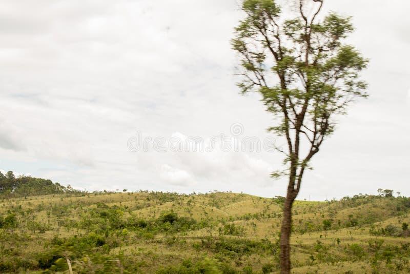 Pi?kny krajobraz z zielonym montain zdjęcia royalty free