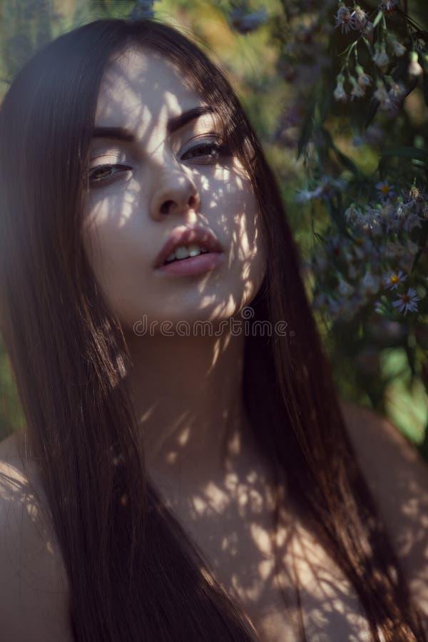 Pi?kny m?oda kobieta portret w kwiatu polu obraz stock