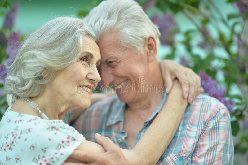 Pi?kny starszy pary przytulenie na lilym tle w parku obraz stock