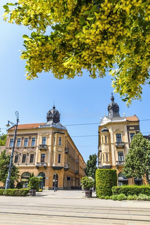 Piac-utca, die Hauptstraße von Debrecen-Stadt, Ungarn lizenzfreies stockfoto