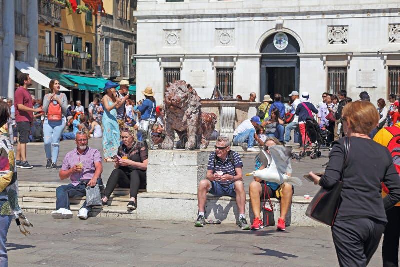 Piacenza Leoncini in der Ecke von San Marco Square, Venedig stockfoto