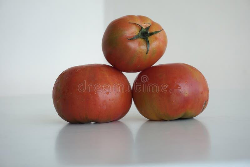 Piacevole molto appetitoso di sguardi dei pomodori di rosso tre fotografia stock libera da diritti