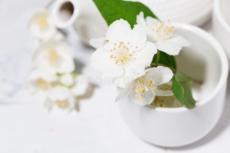 Pialat, té y jazmín blancos fiesta del té japonesa, foco selectivo del primer fotografía de archivo libre de regalías