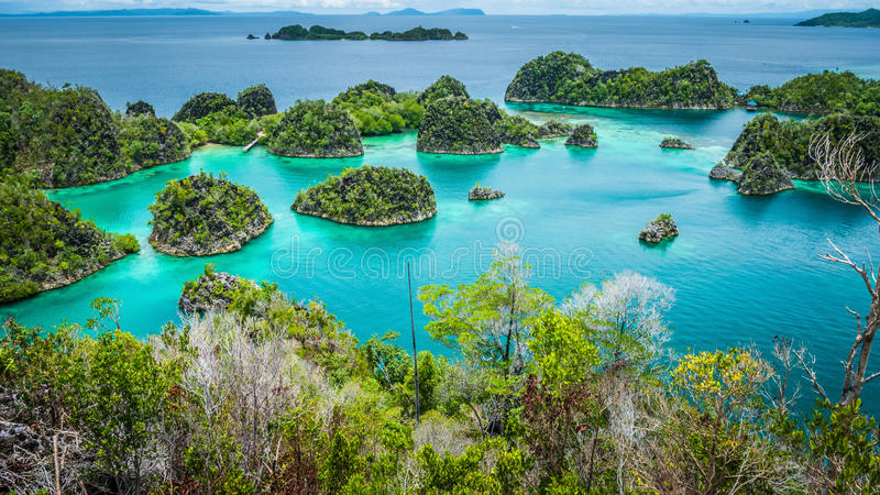 Pianemo islands surrounded by azure clear water and covered by green vegetation. Raja Ampat, West Papua, Indonesia stock photos