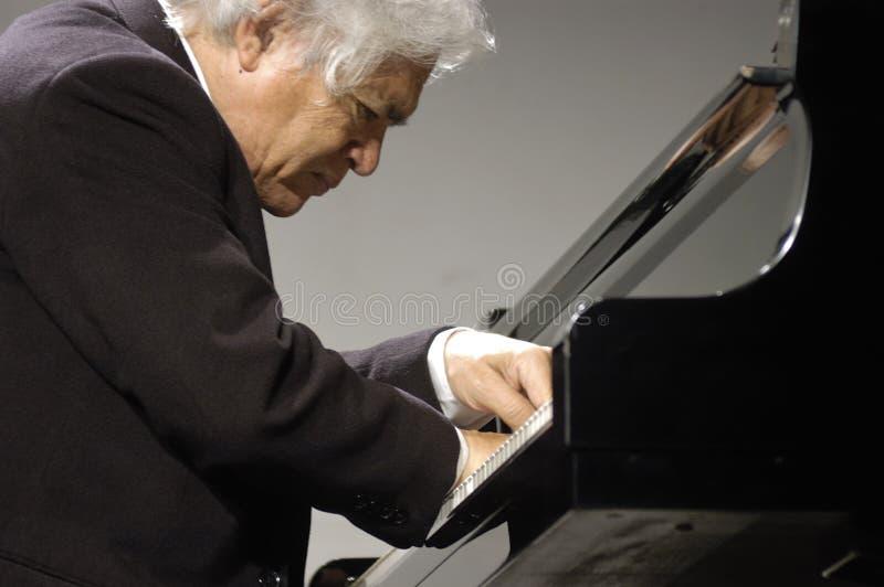 pianist imagens de stock royalty free