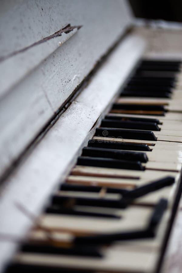 Piano branco do vintage velho em uma floresta fotografia de stock royalty free