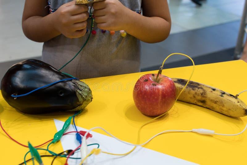 Piano de la fruta con los niños La actividad de educación del TRONCO permite a niños al pla imágenes de archivo libres de regalías