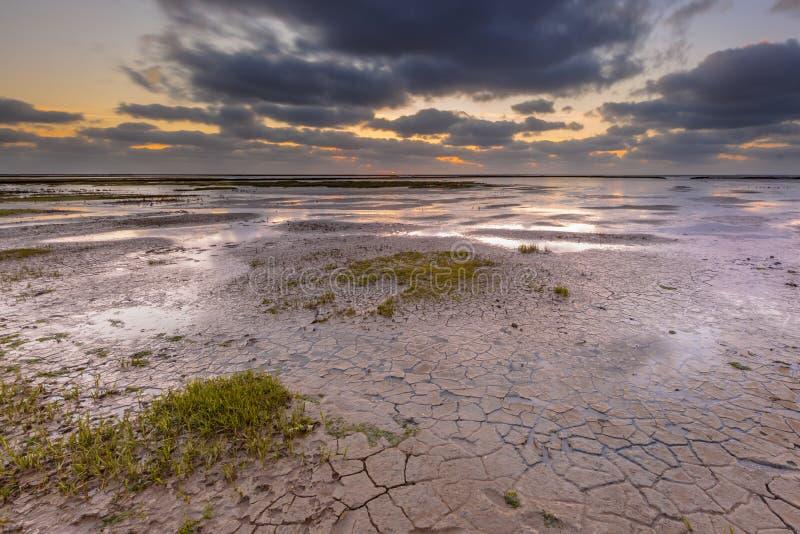 Piano di fango della maremma fotografie stock
