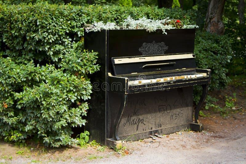 Piano en los arbustos foto de archivo libre de regalías