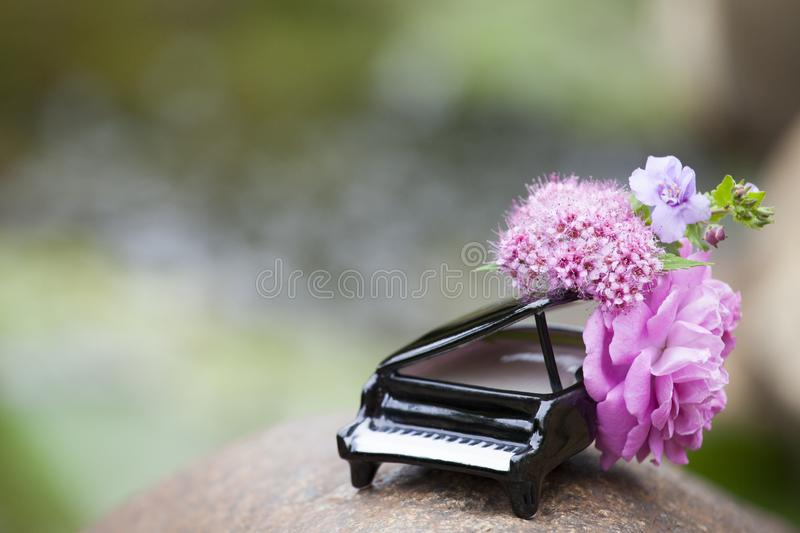 Piano flower river background nobody. Day light stock photos