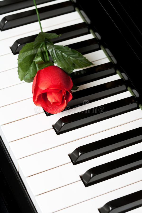Free Piano Key And Rose Royalty Free Stock Photo - 78436065