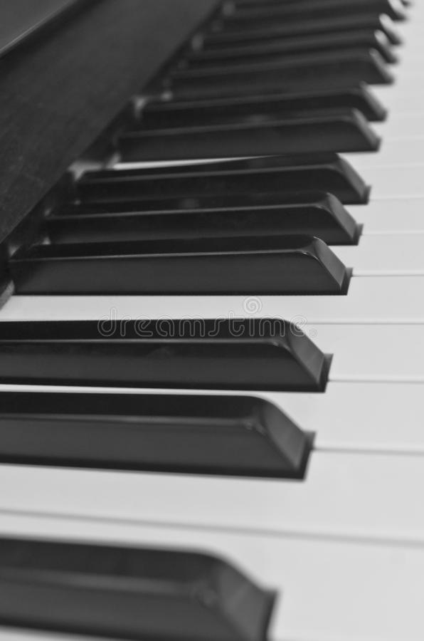 Monochrome D minor. Piano key macro of scale set for players of the stringed key instrument. musical styles pedals percussion notes harmony composers medium royalty free stock photography