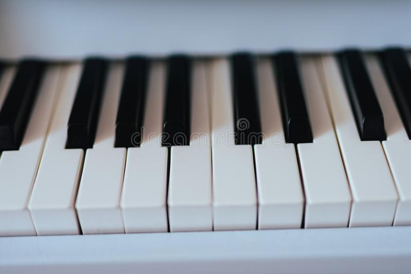 Piano keyboard close up. White and black keys of instrument. Music, toy, entertainment, sound, close-up, musical, plastic, play, fun, isolated, childhood stock photo