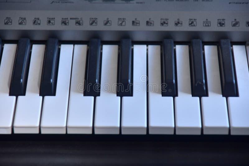 Piano keybord image.Fancy keybord.Flower on a piano keybord.Black and white keybord. Real zise stock photography