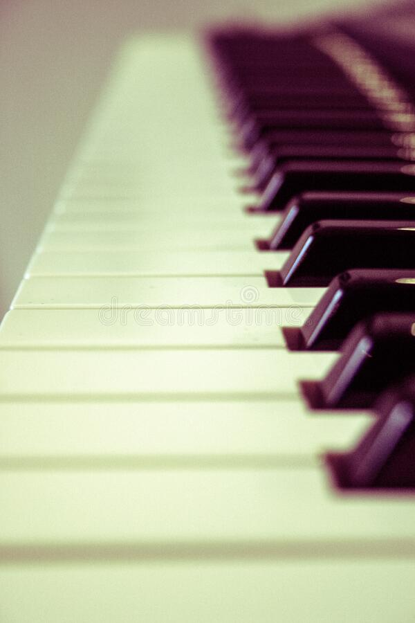 Piano keys stock photography