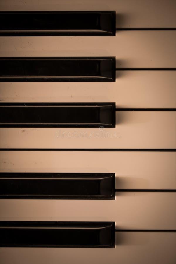 Piano keys close-up, musical instrument. Beautiful background stock photo