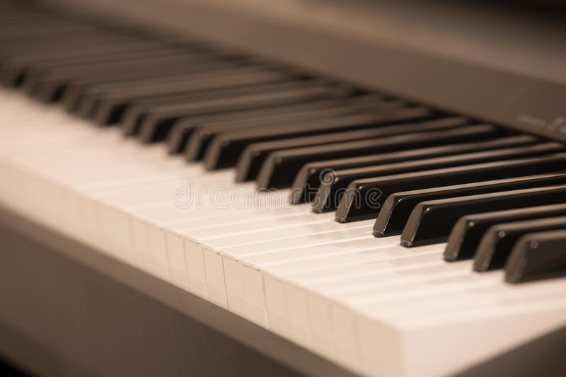 Piano keys. stock images