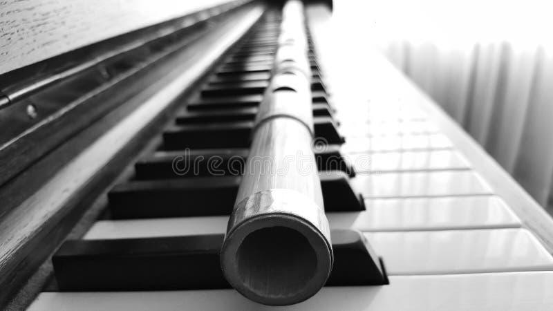 Piano & Ney arkivfoto