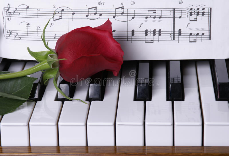 Piano with Red Rose royalty free stock images