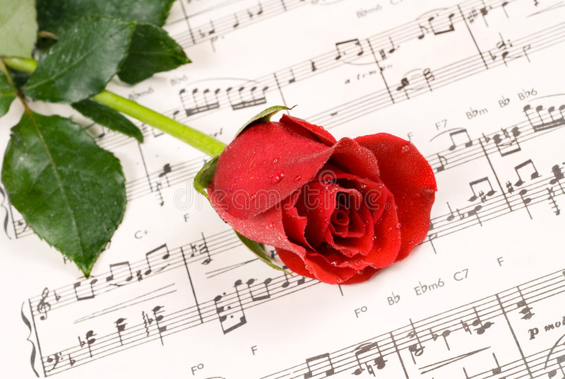 Piano rose royalty free stock images