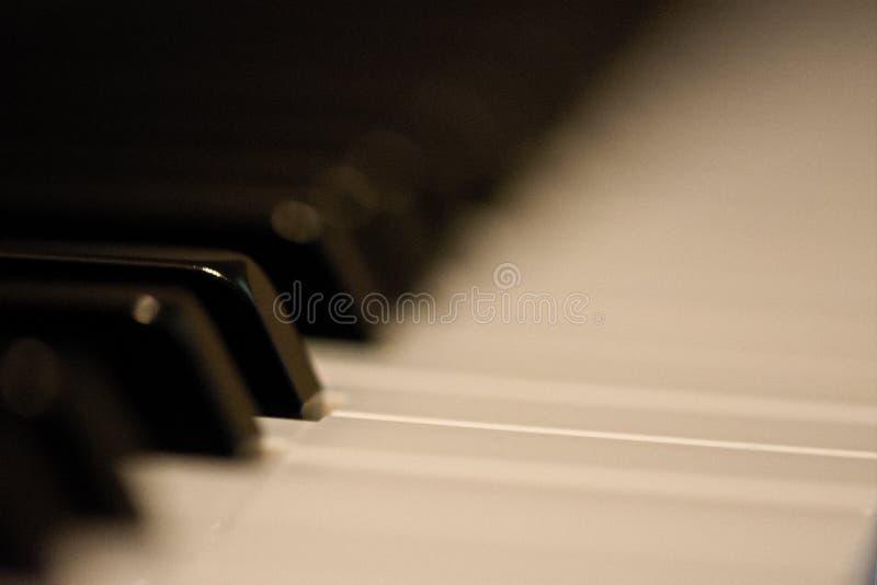 Pianoknappar sid - vid - sidan arkivfoto