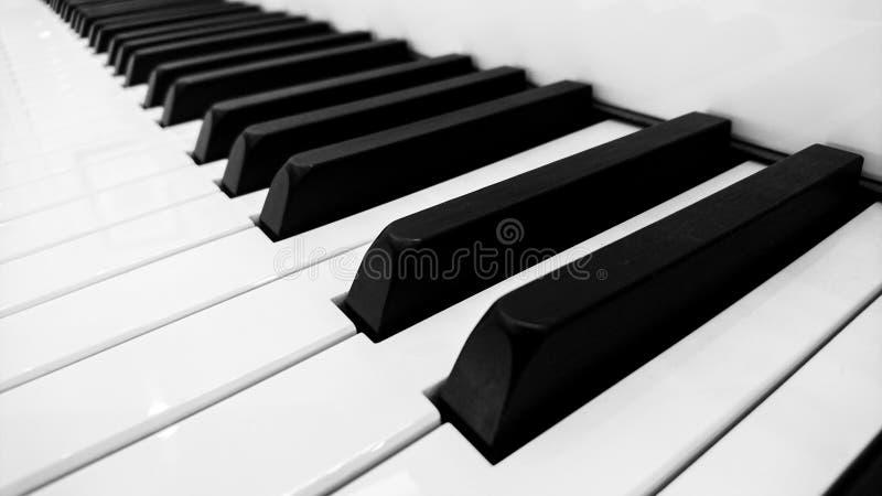 Pianotangent i svartvitt arkivbilder