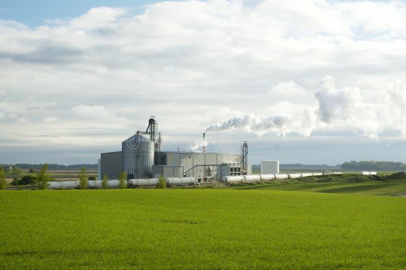 Pianta 2 dell'etanolo immagini stock