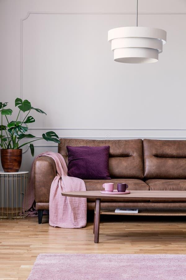Pianta accanto al divano di cuoio con la coperta rosa nel retro interno del sottotetto con la tavola di cui sopra della lampada immagine stock libera da diritti