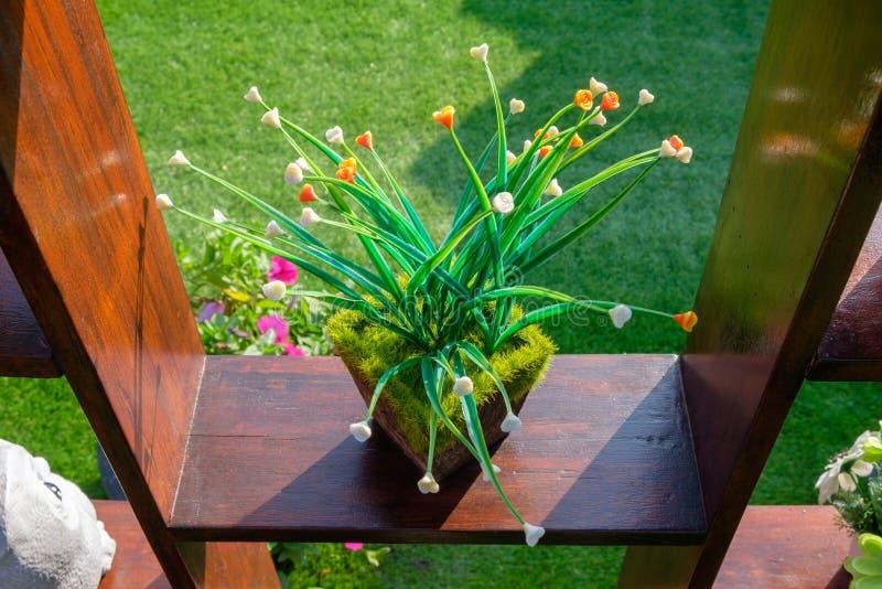 Pianta decorata all'aperto fotografie stock