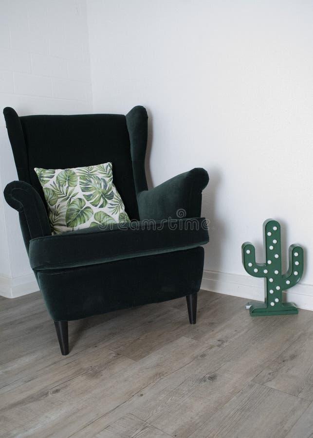Pianta del cactus della sedia di colore verde sotto forma di luce immagini stock libere da diritti