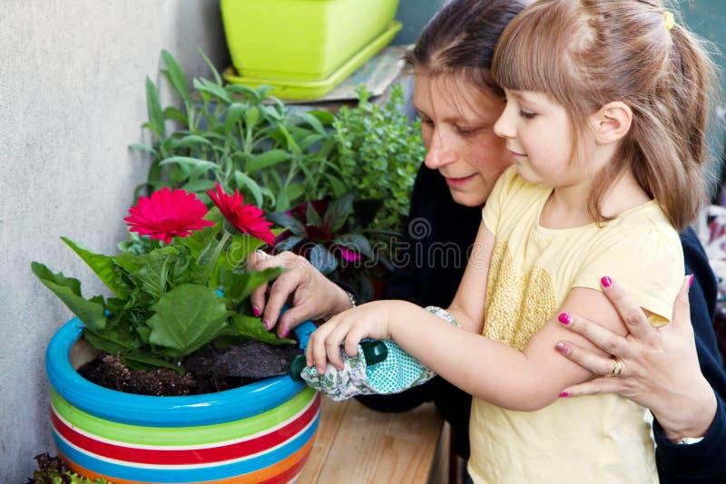 Pianta di giardinaggio del fiore del bambino e della madre fotografia stock libera da diritti