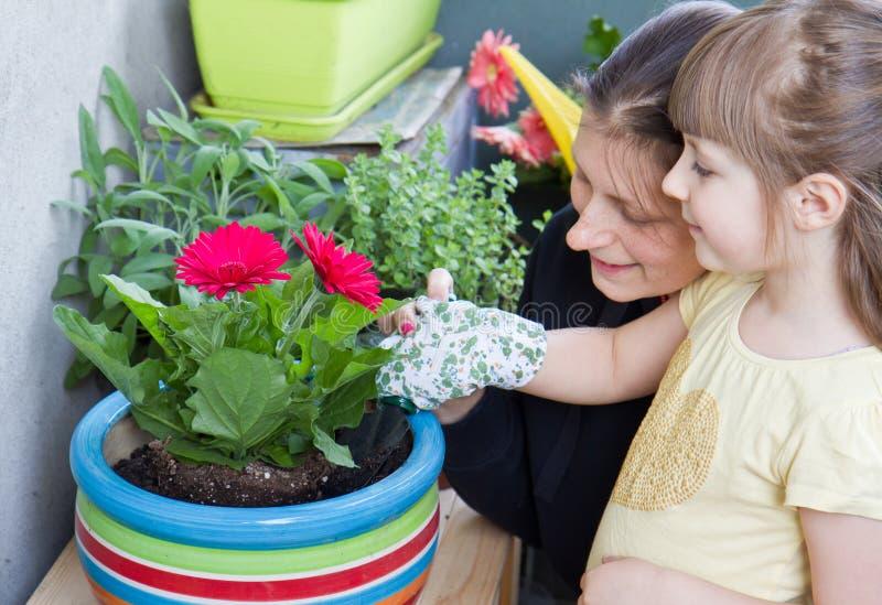 Pianta di giardinaggio del fiore del bambino e della madre immagini stock libere da diritti