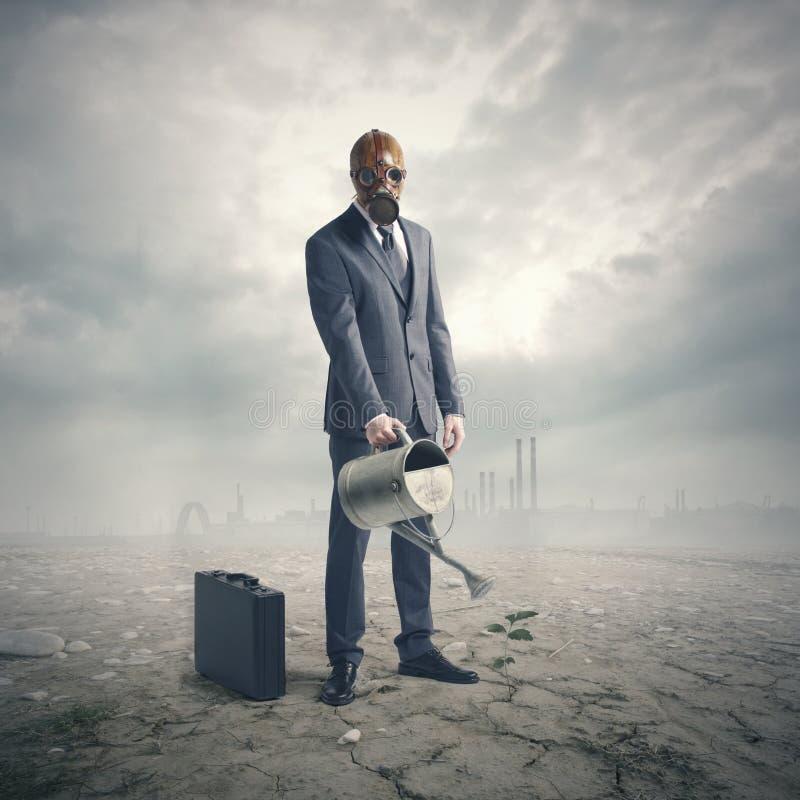 Pianta di innaffiatura dell'uomo d'affari in deserto fotografie stock