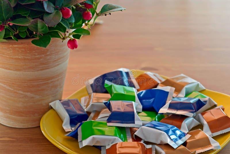 Pianta di pernettya con le caramelle colorate fotografia stock libera da diritti