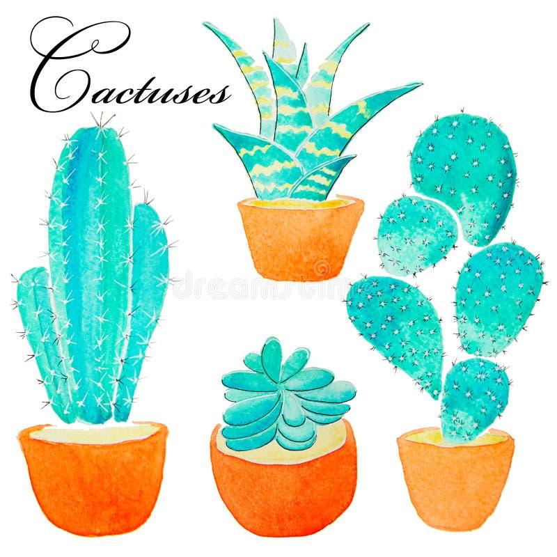 Pianta dipinta a mano del cactus dell'acquerello e pianta del succulente in vaso Clipart dell'acquerello, singolo vaso di fiore i illustrazione vettoriale