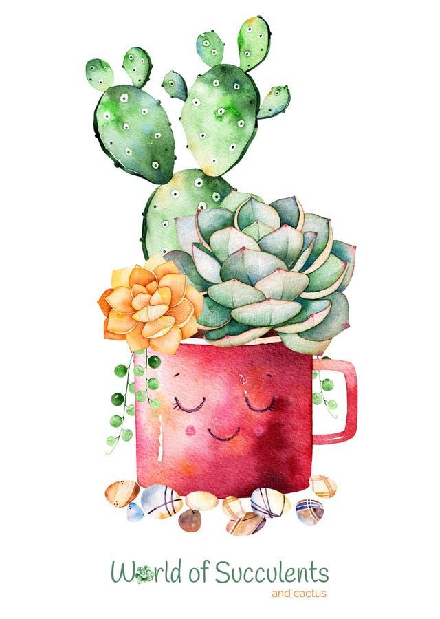 Pianta e cactus succulenti dipinti a mano dell'acquerello nelle pietre del ciottolo e del vaso illustrazione vettoriale