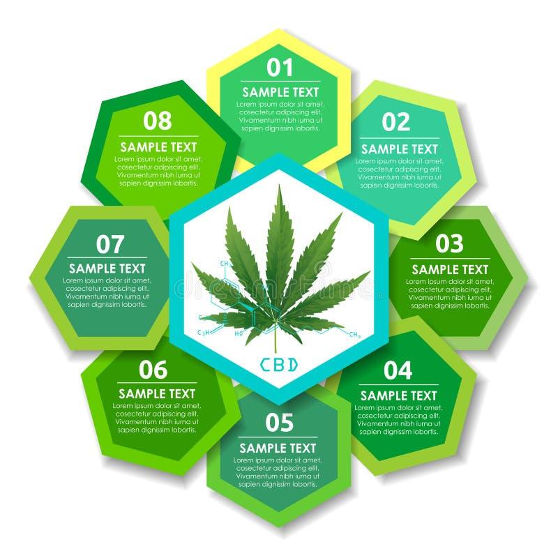 Pianta e cervello di marijuana sugli ambiti di provenienza di CBD illustrazione vettoriale
