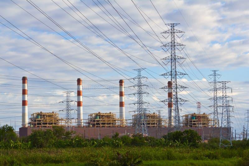Pianta e piloni di corrente elettrica fotografia stock