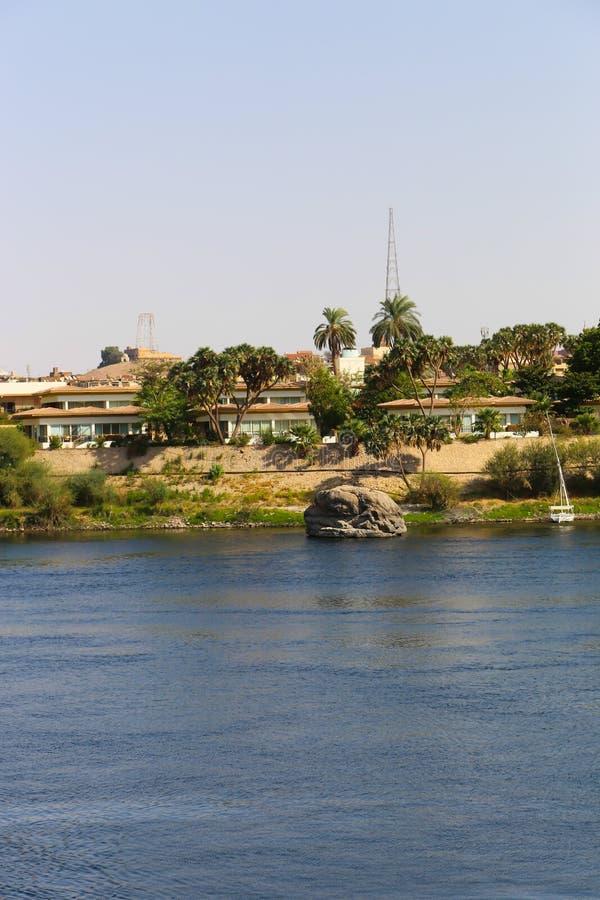 Pianta l'isola a Assuan immagine stock