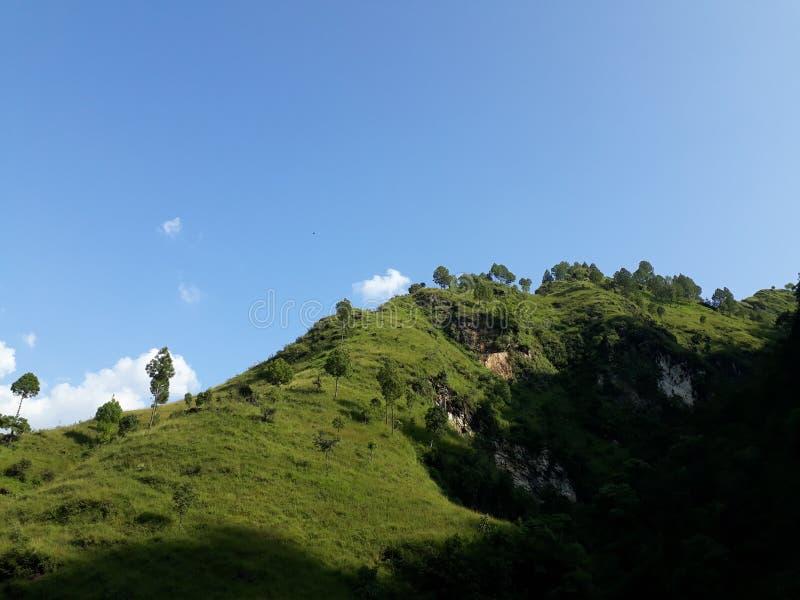 Pianta occidentale del Nepal fotografia stock