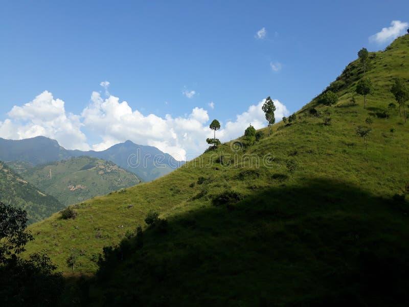 Pianta occidentale del Nepal immagine stock